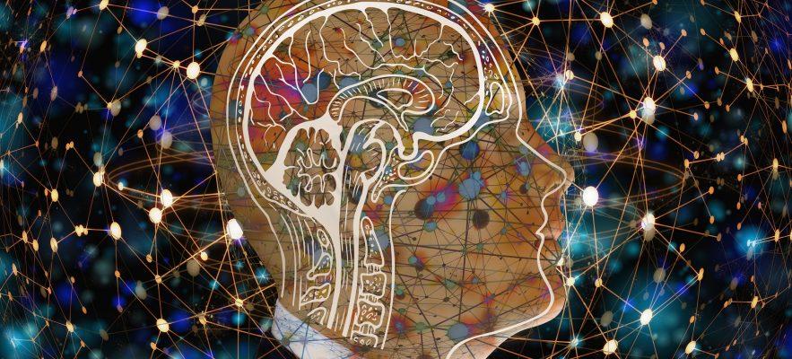 Intelligence E Servizi. Il Sistema Informativo Nazionale.
